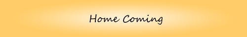 Home Coming - Welcome to my Counseling Practice